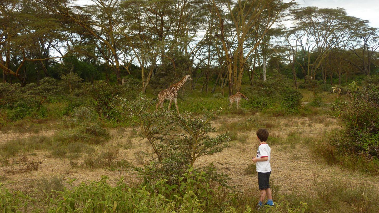 Safari à pied à Crescent island-Kenya