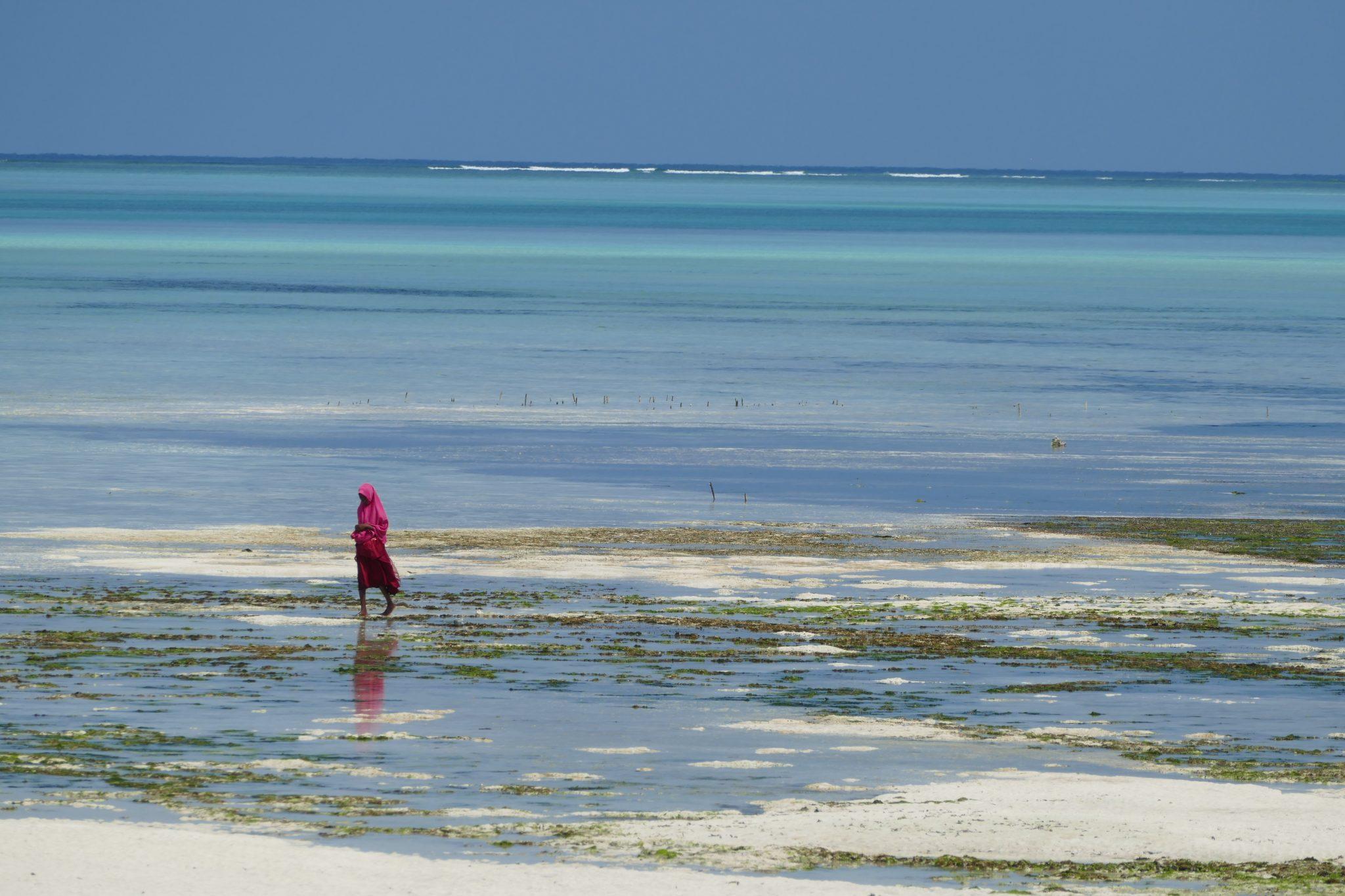 Reflets dans l'eau turquoise de Zanzibar